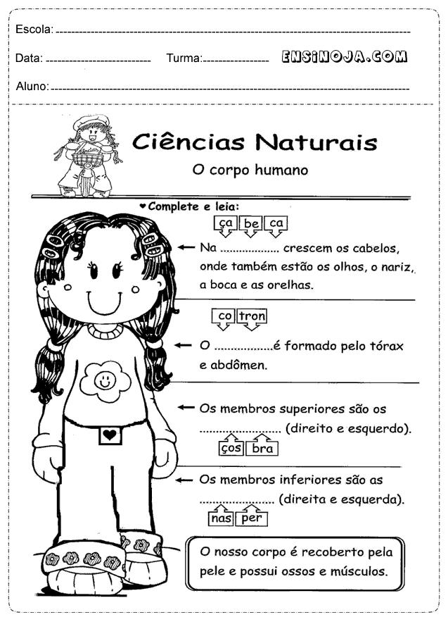 Excepcional Atividades de Ciências 1° ano - Ensino Já TD71