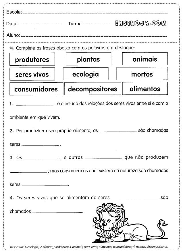 Complete as frases com as palavras em destaque