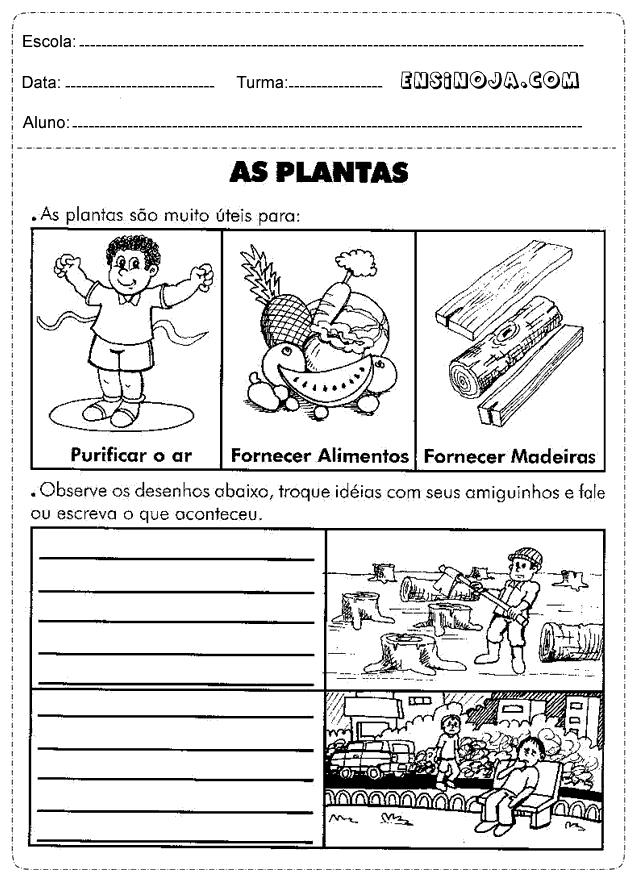 Atividades meio ambiente: Plantas