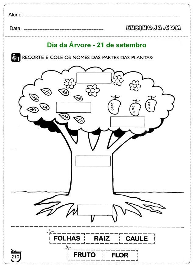 Super Atividade dia da arvore educação infantil - Ensino Já NY83