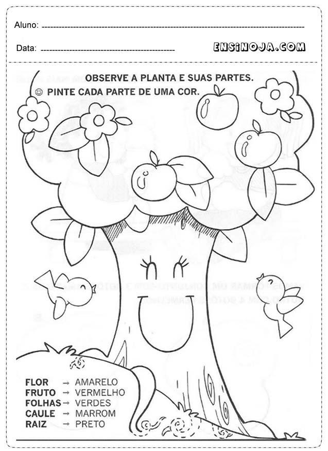 Preferência Atividades de primavera para educação infantil - Ensino Já NV93